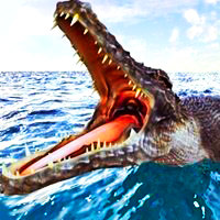 crocodile simulator