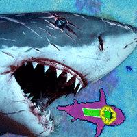 Sharkz.io