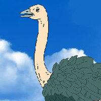 Super Ostrich Simulator