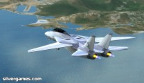 Airplane Simulator: F 14 Tomcat