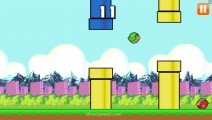 Angry Flappy Birds: Green Bird Flying Gameplay