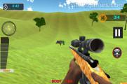 Animal Safari Hunting: Gameplay