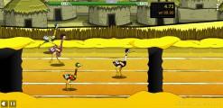 Big Bird Racing: Bird Sprint Gameplay
