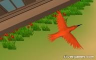 Bird Simulator: Bird