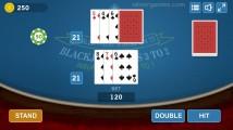 Blackjack: Gambling Gameplay
