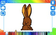 Coloring Book: Animals: Coloring Picture