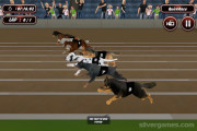 Crazy Dog Racing: Dogs Sprinting Gameplay