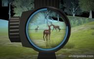 Deer Hunter: Hunting Deer Gameplay