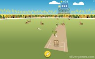 Doodle Cricket: Cricket Turtles Snailes
