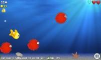 Fishy Rush: Fish Swimming
