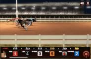 Greyhound Racing: Dog Race