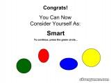 Idiot Test: Test