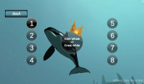 Killer Whale Simulator: Killing Match