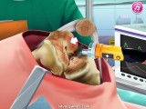 Knee Surgery: Surgeon