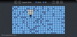 Microsoft Minesweeper: Expert Mine Field