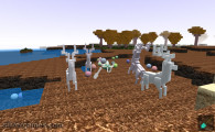 Minecraft Builder: Minecraft Land