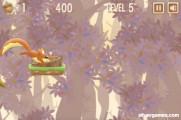 Nut Rush: Squirrel Race