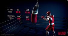 Punchers: Boxing Training