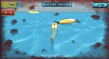 Shark Simulator: Shark Bloody Attack