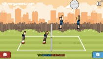 Volley Physics: Volleyball Gameplay