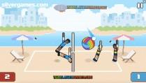 Volley Physics: Volleyball Ball Beach